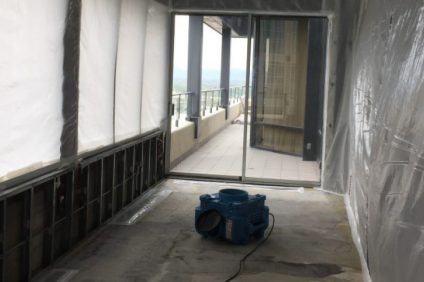 image-storm-mold-remediation