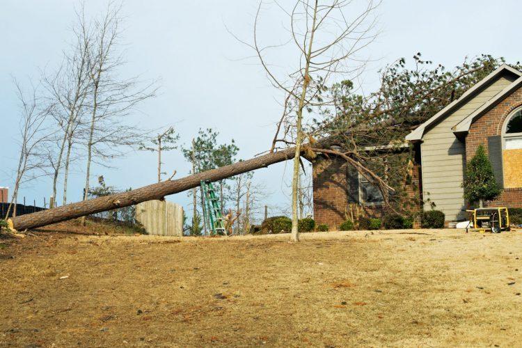 Disaster Kleenup Storm Disaster
